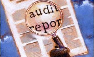 Banks Get Online Access to Audit Reports